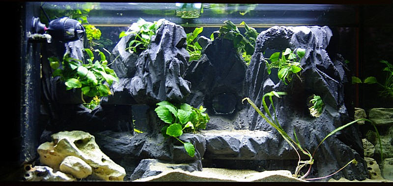 R aliser un decor en polystyrene extrud enduit for Decoration pour aquarium d eau douce