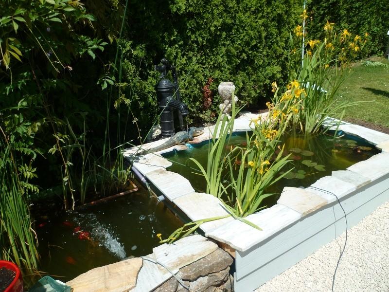 Mes petits bassins de ces 6 dernieres ann es forum bassin - Bassin plantes oxygenantes besancon ...
