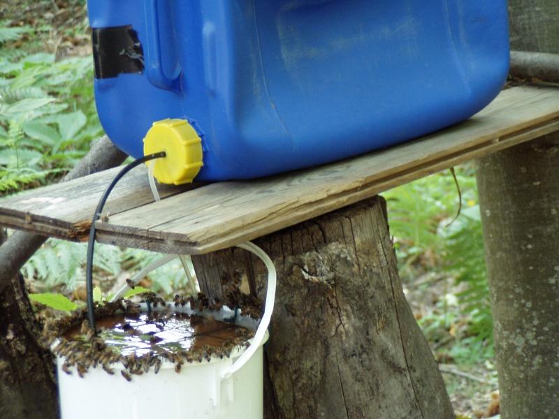 De l 39 eau au rucher la ruche warr - Maison pour les poules ...