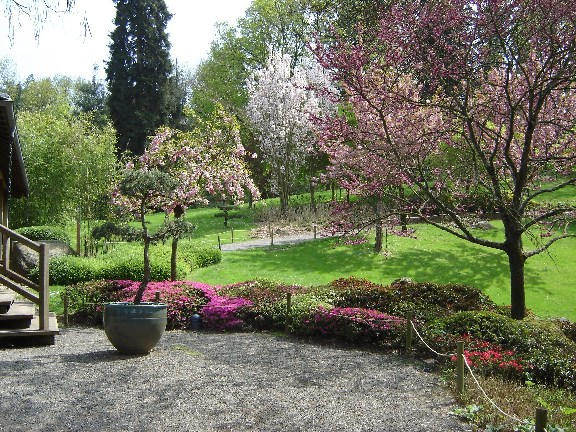 Jardins japonais for Jardin japonais angers