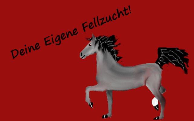 pferdestall für alle