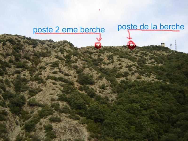 divers13.jpg