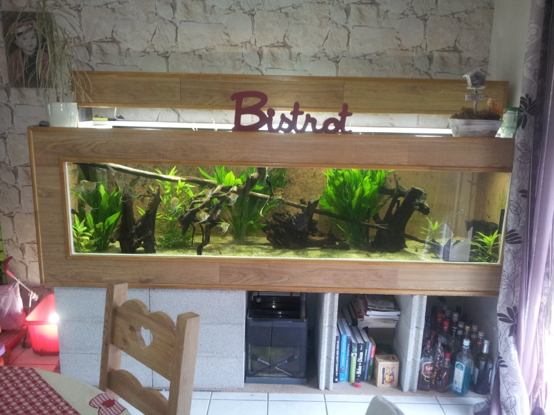 aquarium bois de 1 600 Lts -> Aquarium Maison Bois