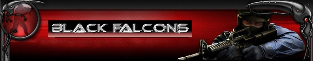 The Black Falcons