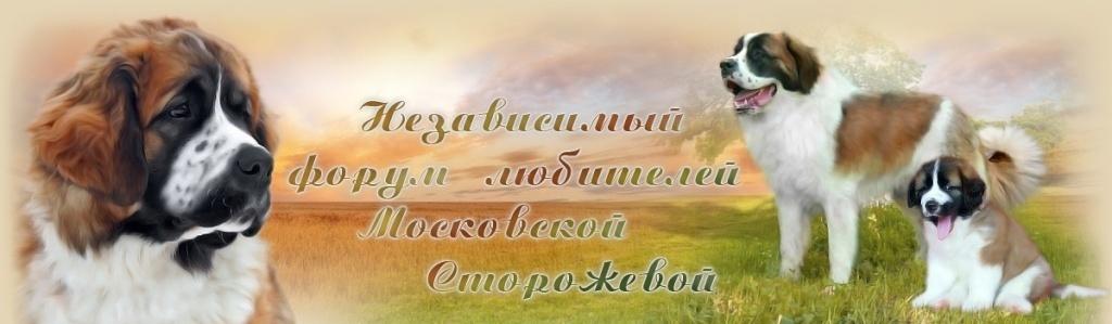 moskovskaya storozhevaya