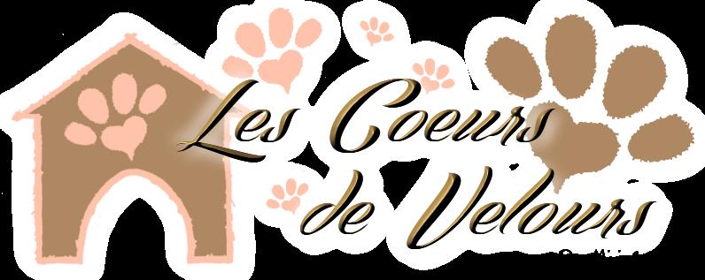 Les Coeurs de Velours | Protection Animale | Nîmes - Alès - Cahors - Figeac